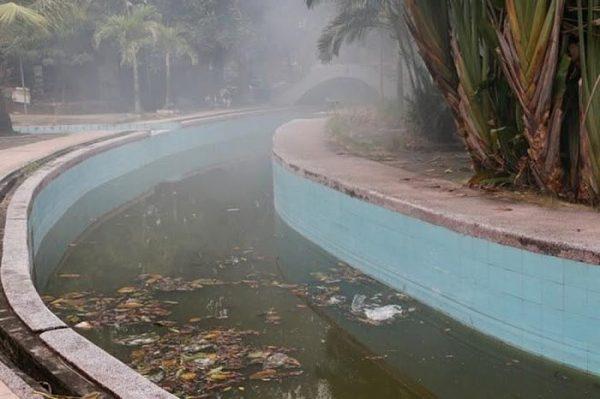 Tình trạng hồ bơi nếu không được dọn dẹp, vệ sinh thường xuyên